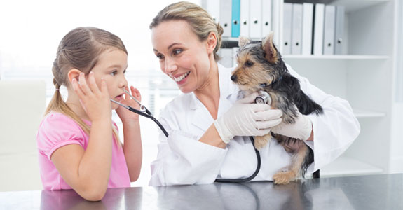 Veterinary Clinics in Dunlap IL